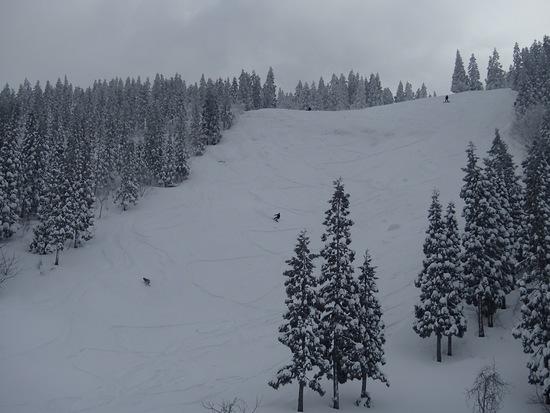 ジュネス栗駒スキー場のフォトギャラリー3