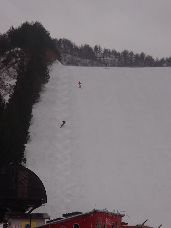 モーグルコース|胎内スキー場のクチコミ画像