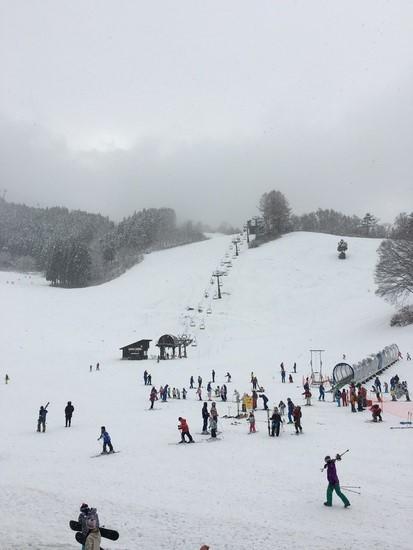 今年は本当に雪不足|野沢温泉スキー場のクチコミ画像