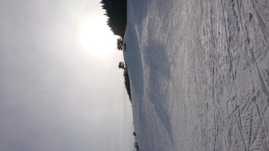 一番好きなスキー場|ばんしゅう戸倉スノーパークのクチコミ画像2