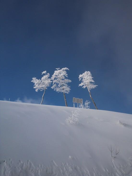 抜けるような青い空☆|エイブル白馬五竜のクチコミ画像