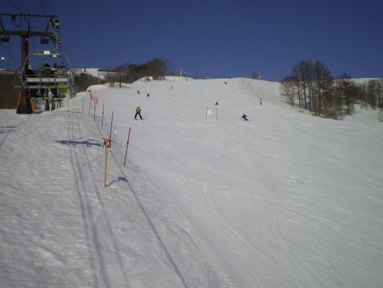 オリンピック開催のスキー場|白馬八方尾根スキー場のクチコミ画像