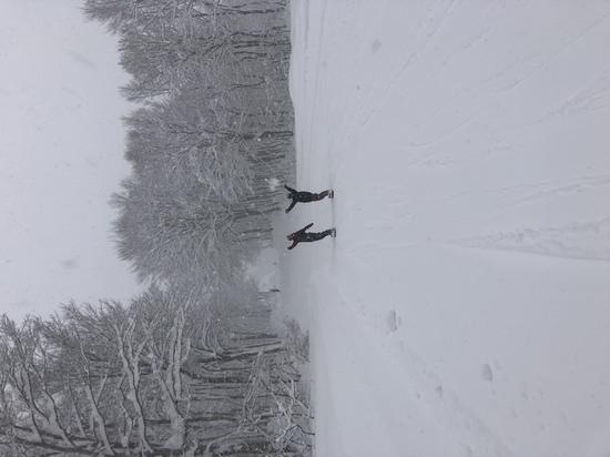 18-19初パウダー|奥只見丸山スキー場のクチコミ画像2