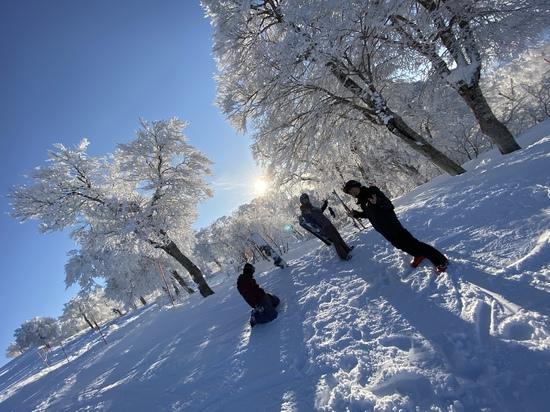 スキーヤーの聖地|野沢温泉スキー場のクチコミ画像