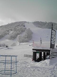 極上のパウダー|かぐらスキー場のクチコミ画像