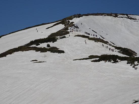 白馬は、桜が満開でした|白馬八方尾根スキー場のクチコミ画像