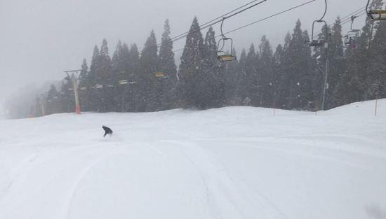 雪、雪、雪~|ホワイトピアたかすのクチコミ画像3