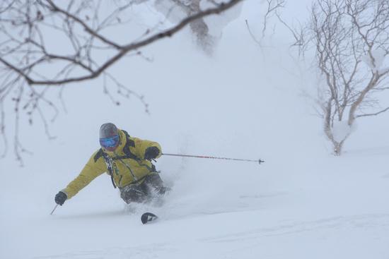 Niseko Village Ski Resort, Amazing!|ニセコビレッジスキーリゾートのクチコミ画像2