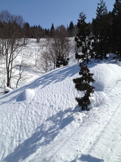 最高のスキー場!!!|苗場スキー場のクチコミ画像