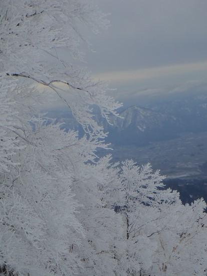 樹氷の美しさ|スキージャム勝山のクチコミ画像