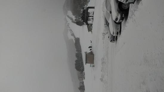 圧雪|志賀高原リゾート中央エリア(サンバレー〜一の瀬)のクチコミ画像