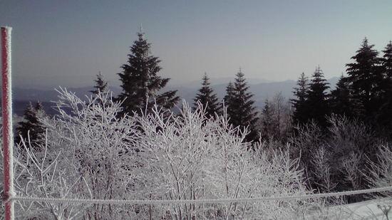 カリカリ、アイスバーン|パルコールつま恋スキーリゾートのクチコミ画像