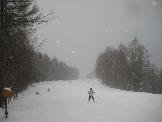 吹雪いて|エーデルワイススキーリゾートのクチコミ画像