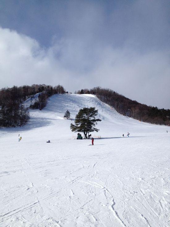 2日目の再トライ 草津温泉スキー場のクチコミ画像