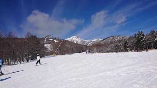暖冬で雪あるのかと心配でしたが|サンメドウズ清里スキー場のクチコミ画像