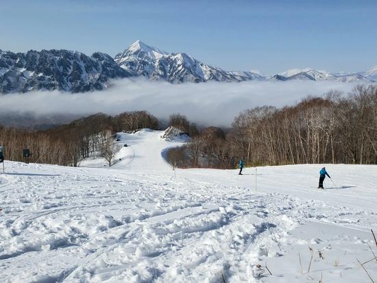 戸隠スキー場のフォトギャラリー5
