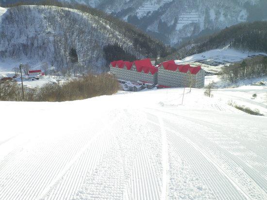 外国人のスキーヤーが多いスキー場|白馬コルチナスキー場のクチコミ画像