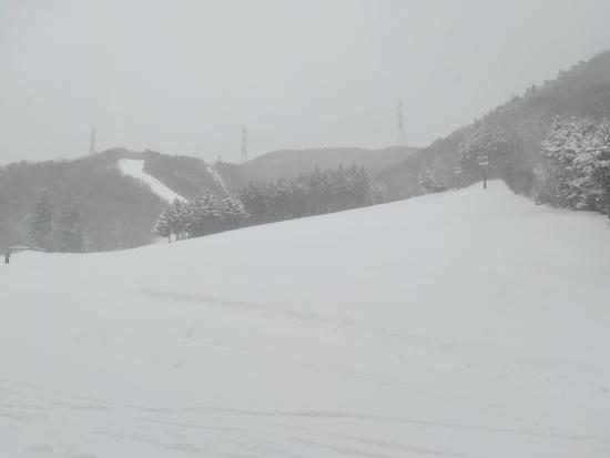 赤沢の壁|みなかみ町営赤沢スキー場のクチコミ画像