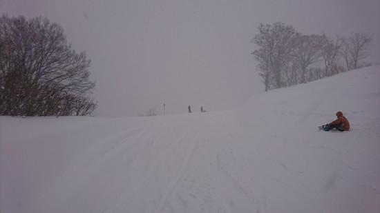 さすがのかぐら すごい新雪|かぐらスキー場のクチコミ画像
