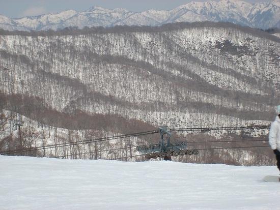 スキーヤーが多い