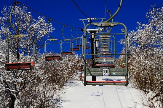 カービング|さかえ倶楽部スキー場のクチコミ画像2
