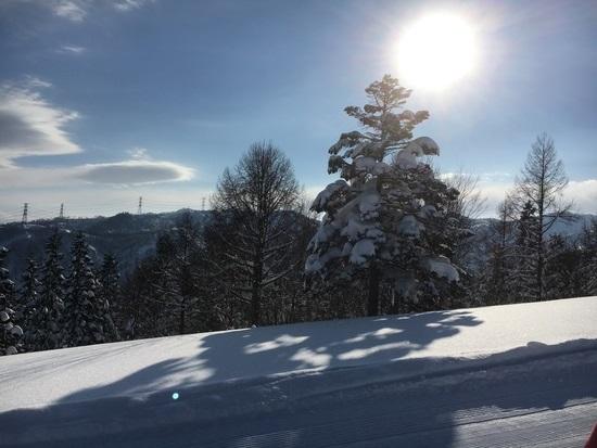 晴天|ニュー・グリーンピア津南スキー場のクチコミ画像1