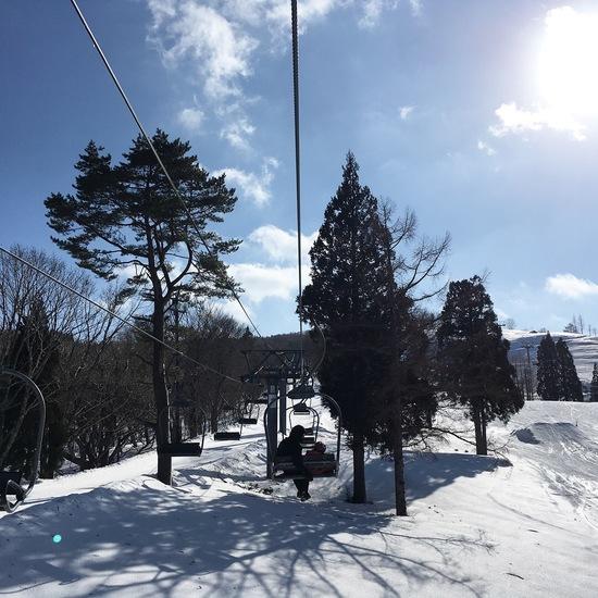 日本一長いソリコース|スノーウェーブパーク白鳥高原のクチコミ画像
