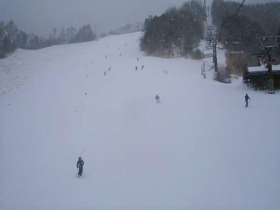 新板投入|信州松本 野麦峠スキー場のクチコミ画像