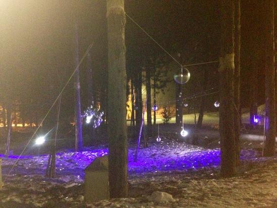 ミッドナイター23:00~4:00|神立スノーリゾート(旧 神立高原スキー場)のクチコミ画像