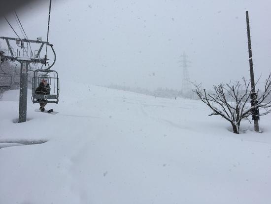 終日雪模様!|となみ夢の平スキー場のクチコミ画像1