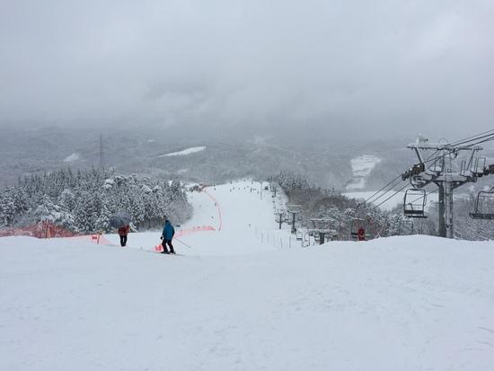 終日雪模様!|となみ夢の平スキー場のクチコミ画像2