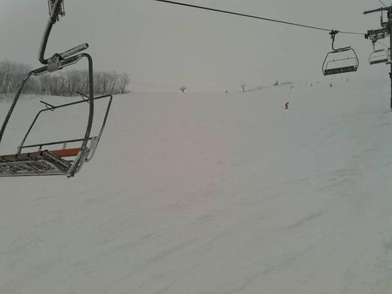 新雪堪能|白馬八方尾根スキー場のクチコミ画像