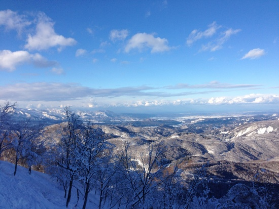 ツリーラン|斑尾高原スキー場のクチコミ画像1