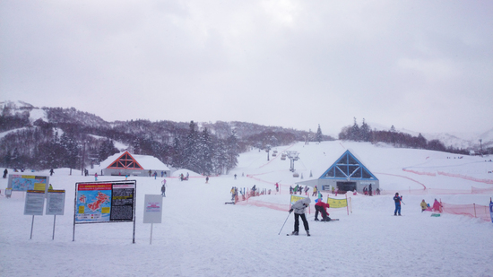 大好きなゲレンデ|KIRORO SNOW WORLDのクチコミ画像