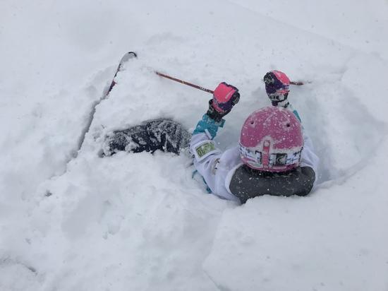 パウダー楽しい|斑尾高原スキー場のクチコミ画像