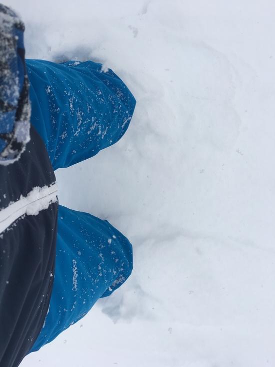 膝パウダーで未圧雪 ホワイトワールド尾瀬岩鞍のクチコミ画像2
