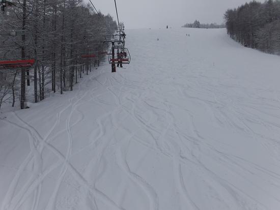 130207しらかば2in1|しらかば2in1スキー場のクチコミ画像2