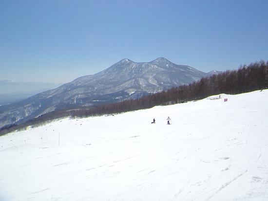 3連泊以上して楽しみたいスキー場|妙高杉ノ原スキー場のクチコミ画像