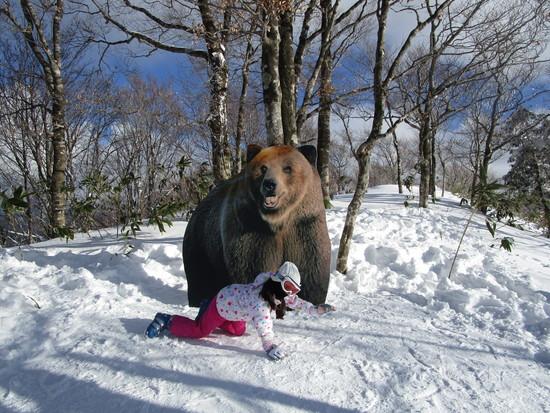 家族スキー(7歳の娘の特訓と4歳の娘のスキーデビュー)|ホワイトピアたかすのクチコミ画像