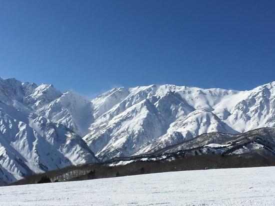 最高なコンディション!|白馬岩岳スノーフィールドのクチコミ画像