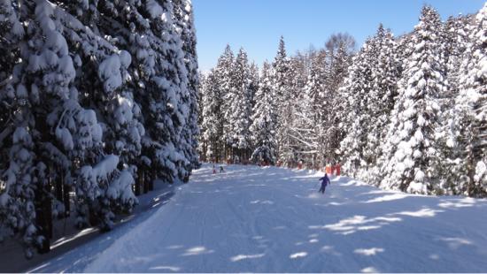 まだまだ行ける! 野沢温泉スキー場のクチコミ画像