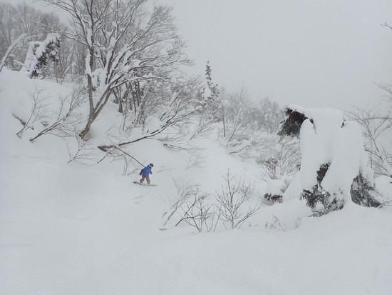 少ないけどそれはそれでいい!|シャルマン火打スキー場のクチコミ画像