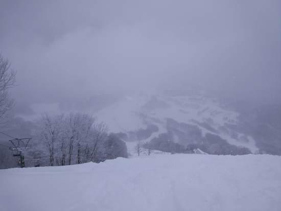パウダー天国でした|斑尾高原スキー場のクチコミ画像