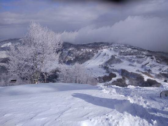パウダー天国でした|斑尾高原スキー場のクチコミ画像2