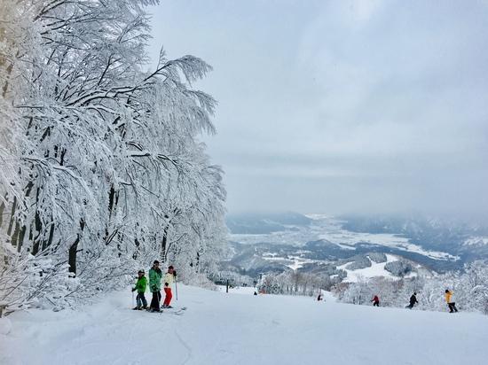 2019初滑り三姉弟|スキージャム勝山のクチコミ画像