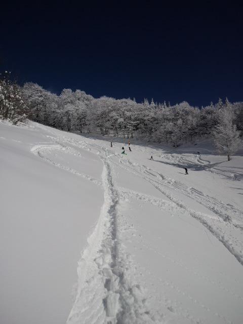 平日料金で空いてました|しらおスキー場のクチコミ画像3