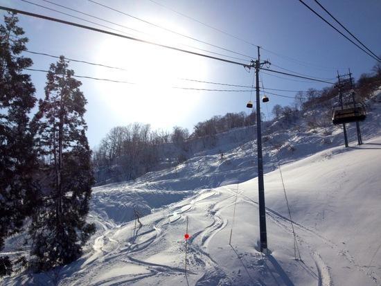新雪を滑りたいならシャルマン! シャルマン火打スキー場のクチコミ画像2