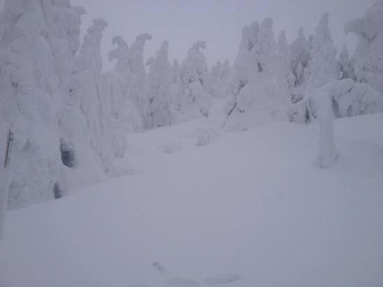 今年は積雪すごい|蔵王温泉スキー場のクチコミ画像
