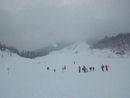 家族でお勧め|飛騨かわいスキー場のクチコミ画像