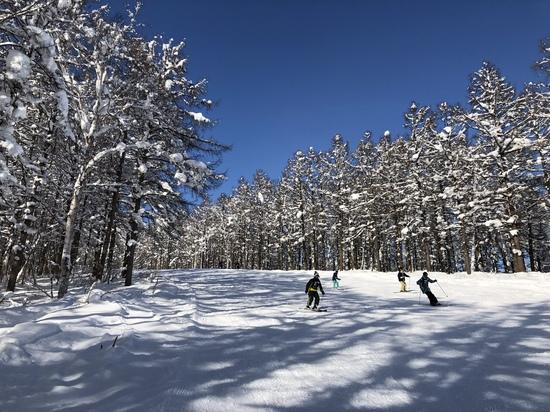 気持ちよく滑りました|池の平温泉スキー場のクチコミ画像